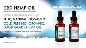 Hemp Oil Is Sweeping The World With Positive Effects